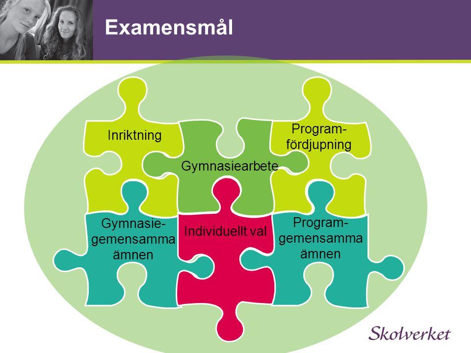 Examensmål Inriktning Gymnasie- gemensamma ämnen Program- fördjupning Individuellt val Program- gemensamma ämnen Gymnasiearbete