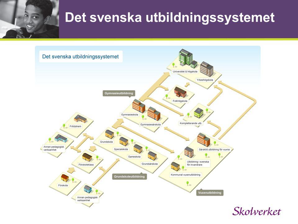 Ett målstyrt system med ett stort lokalt ansvar.