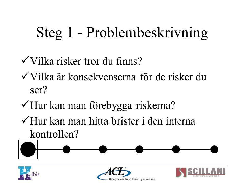 Steg 1 - Problembeskrivning  Vilka risker tror du finns?  Vilka är konsekvenserna för de risker du ser?  Hur kan man förebygga riskerna?  Hur kan