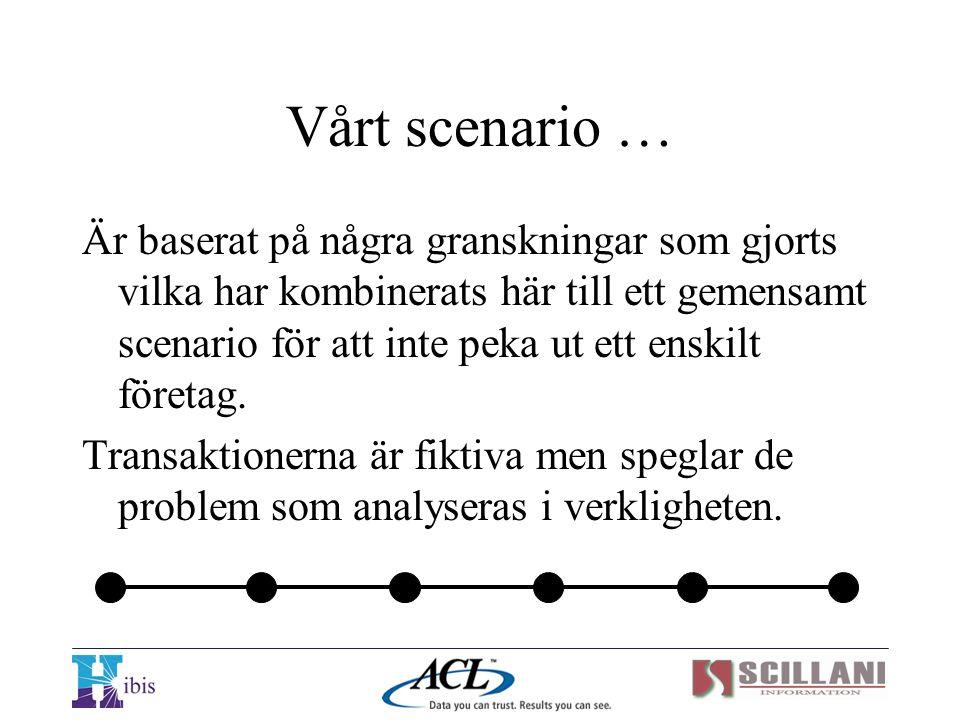 Vårt scenario … Är baserat på några granskningar som gjorts vilka har kombinerats här till ett gemensamt scenario för att inte peka ut ett enskilt för
