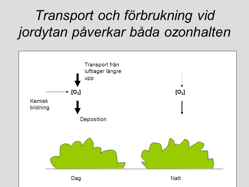 Transport och förbrukning vid jordytan påverkar båda ozonhalten DagNatt [O 3 ] Kemisk bildning Deposition Transport från luftlager längre upp