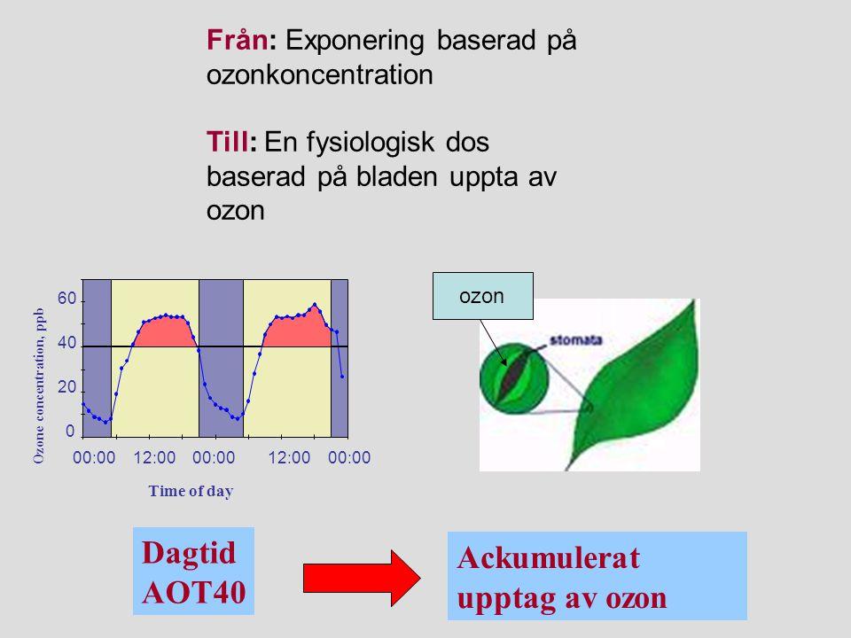 Dagtid AOT40 Ackumulerat upptag av ozon Från: Exponering baserad på ozonkoncentration Till: En fysiologisk dos baserad på bladen uppta av ozon ozon