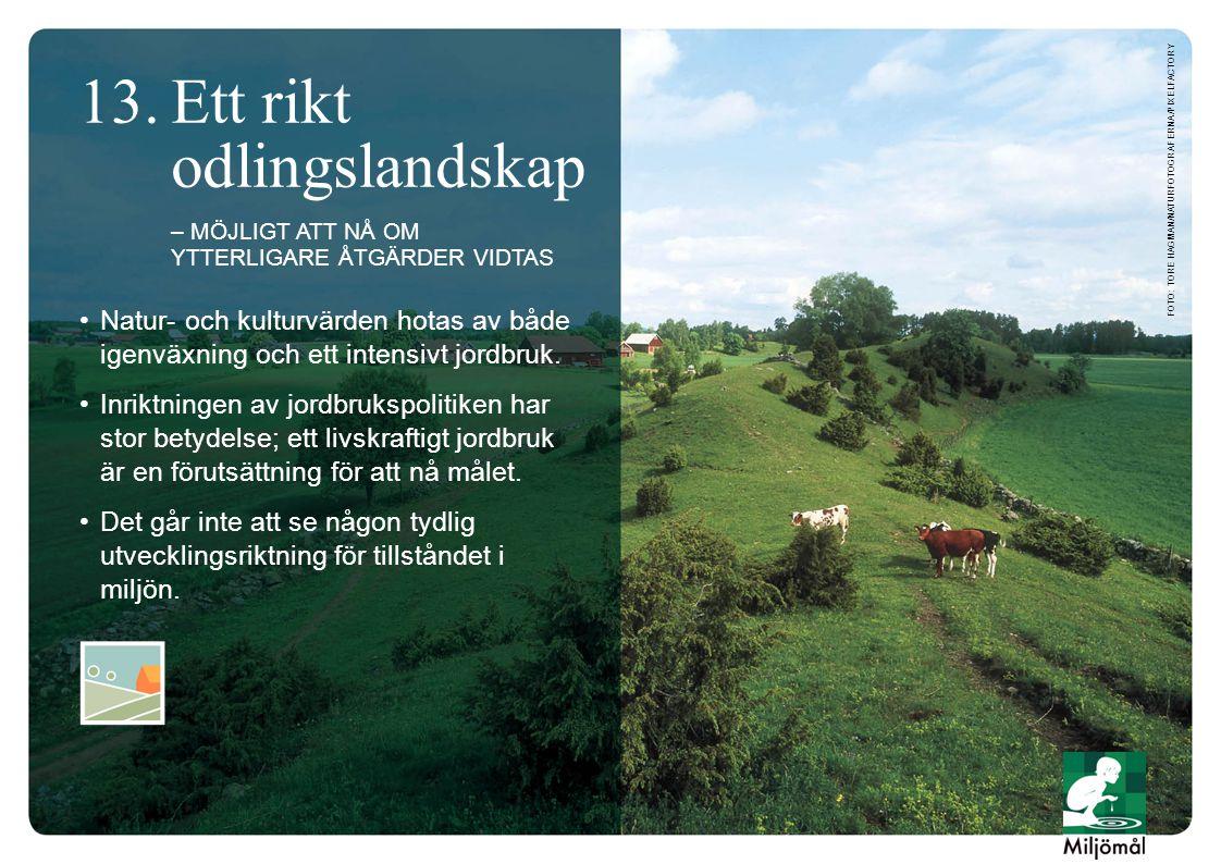 •Natur- och kulturvärden hotas av både igenväxning och ett intensivt jordbruk.