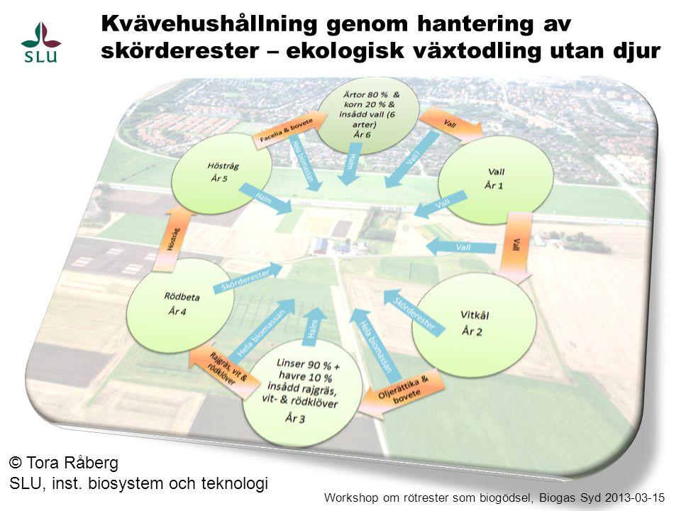 Kvävehushållning genom hantering av skörderester – ekologisk växtodling utan djur © Tora Råberg SLU, inst. biosystem och teknologi Workshop om rötrest