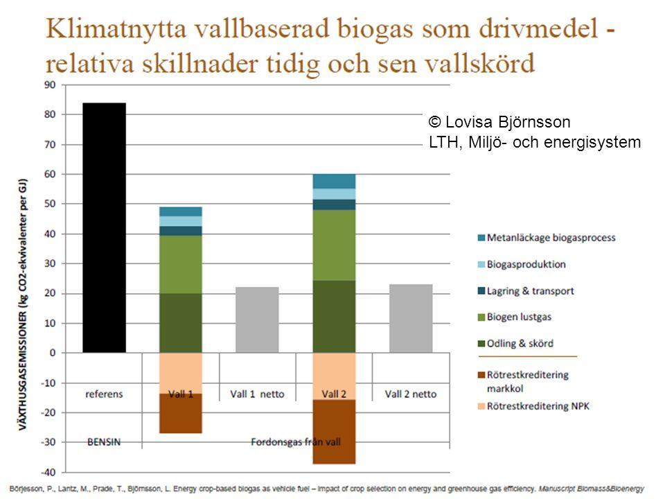 © Lovisa Björnsson LTH, Miljö- och energisystem