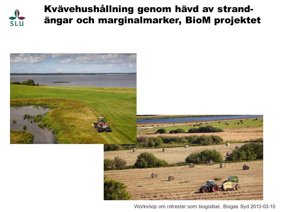 Kvävehushållning genom hävd av strand- ängar och marginalmarker, BioM projektet Workshop om rötrester som biogödsel, Biogas Syd 2013-03-15