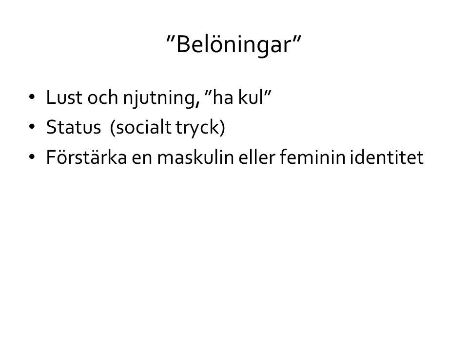 """""""Belöningar"""" • Lust och njutning, """"ha kul"""" • Status (socialt tryck) • Förstärka en maskulin eller feminin identitet"""