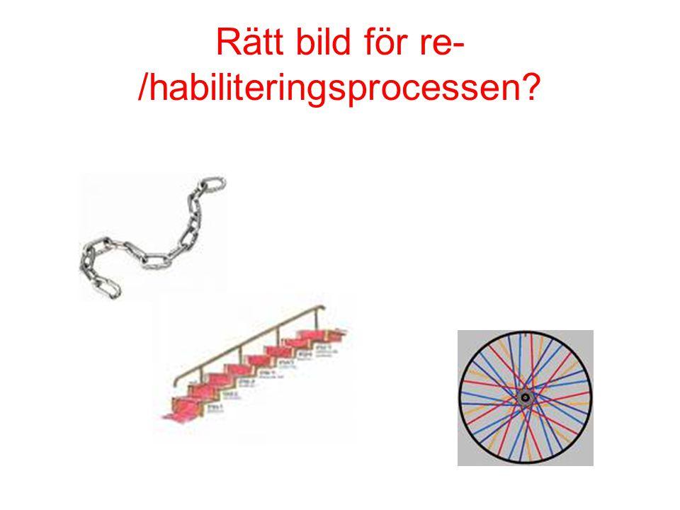 Rätt bild för re- /habiliteringsprocessen?