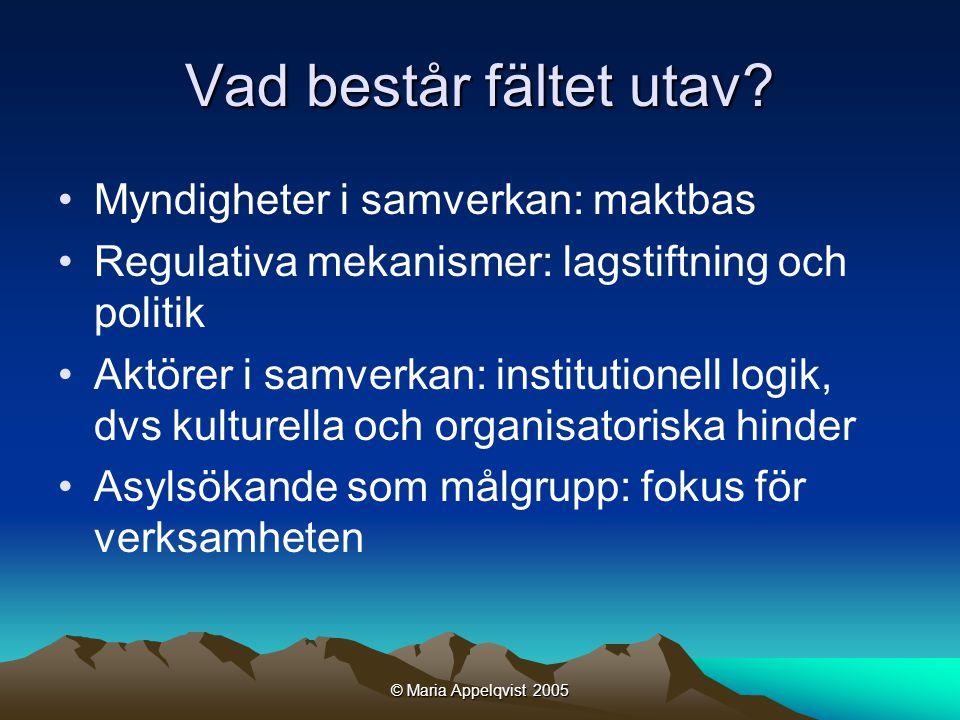 © Maria Appelqvist 2005 Vad består fältet utav.