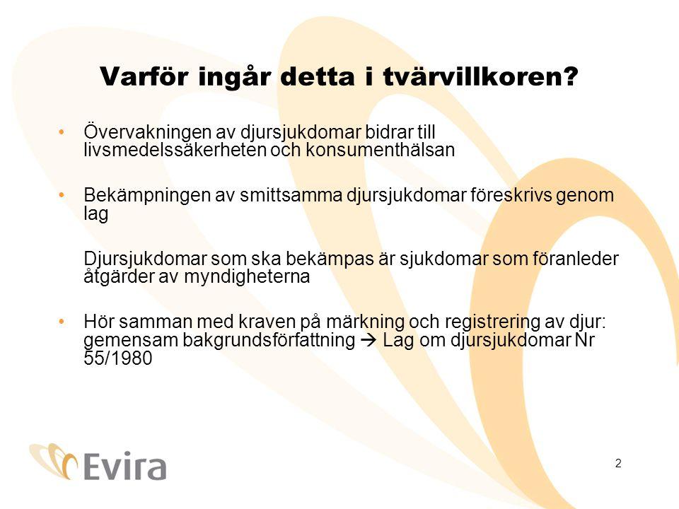 2 Varför ingår detta i tvärvillkoren? •Övervakningen av djursjukdomar bidrar till livsmedelssäkerheten och konsumenthälsan •Bekämpningen av smittsamma