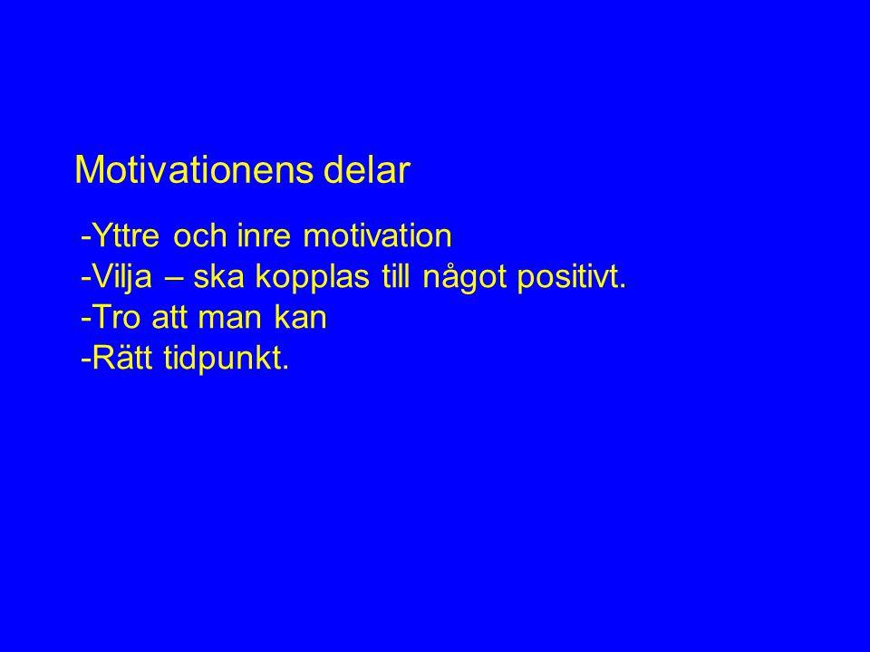 -Yttre och inre motivation -Vilja – ska kopplas till något positivt.