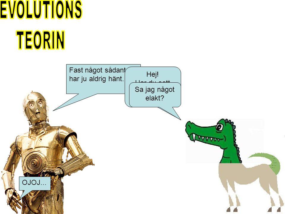 Krokohästodil Krokodil Häst Barnförbjudet!