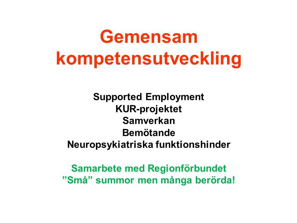 """Gemensam kompetensutveckling Supported Employment KUR-projektet Samverkan Bemötande Neuropsykiatriska funktionshinder Samarbete med Regionförbundet """"S"""