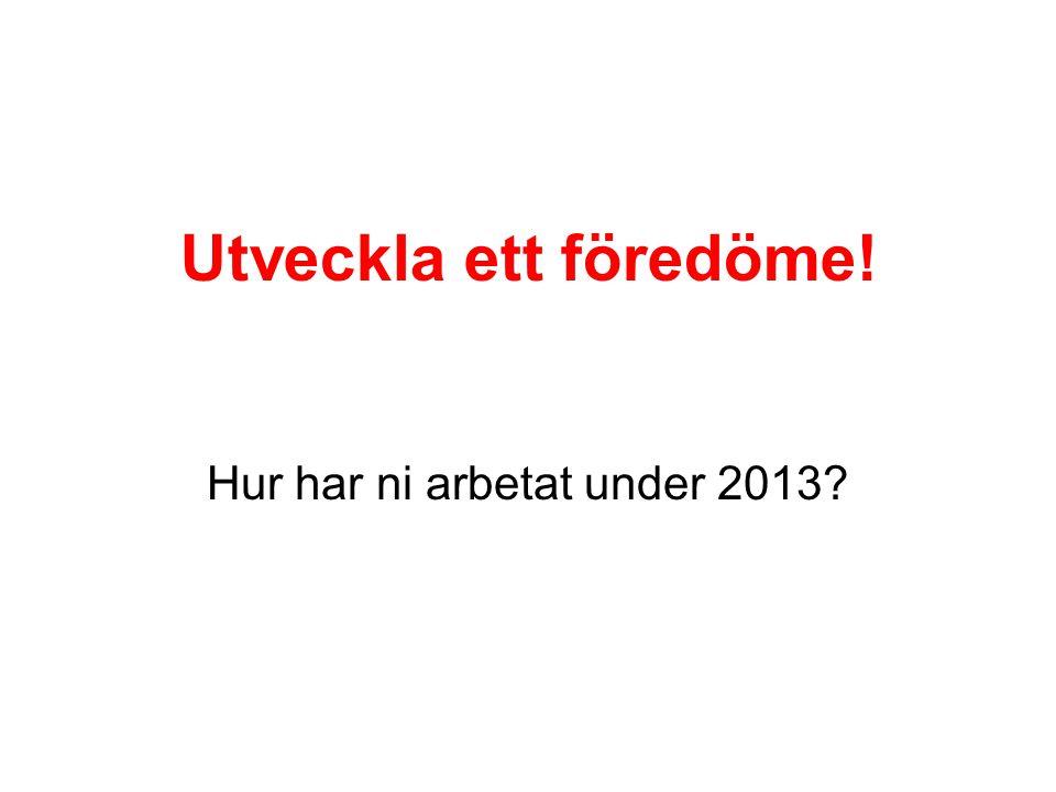 Utveckla ett föredöme! Hur har ni arbetat under 2013?