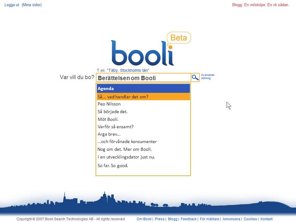 Berättelsen om Booli Agenda Så... vad handlar det om.