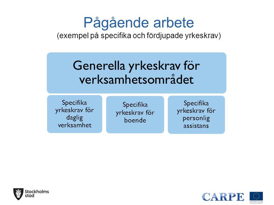 Pågående arbete (exempel på specifika och fördjupade yrkeskrav) Generella yrkeskrav för verksamhetsområdet Specifika yrkeskrav för daglig verksamhet S