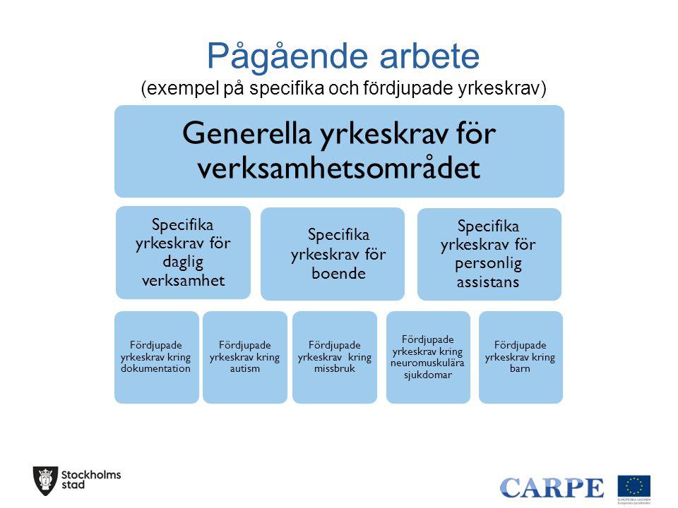 Pågående arbete (exempel på specifika och fördjupade yrkeskrav) Generella yrkeskrav för verksamhetsområdet Specifika yrkeskrav för daglig verksamhet F