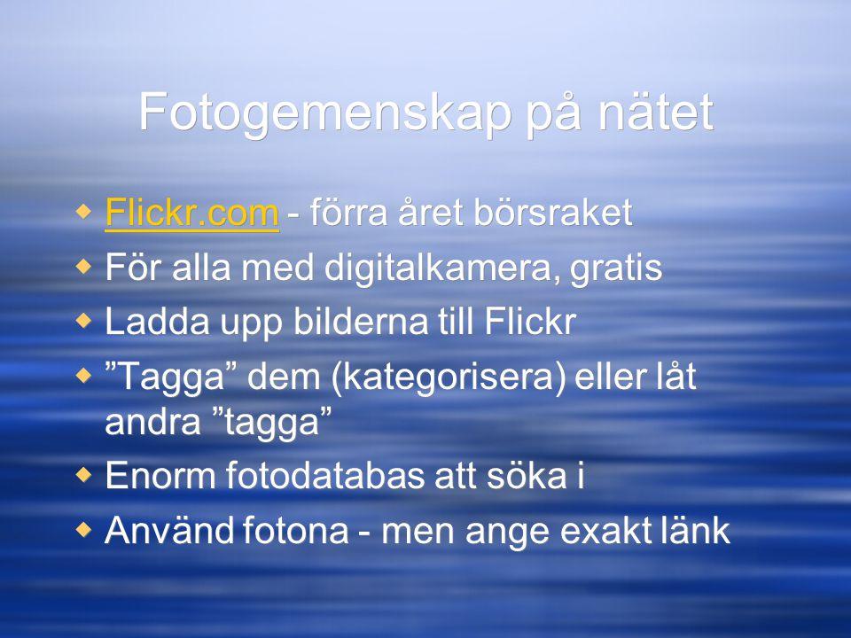 """Fotogemenskap på nätet  Flickr.com - förra året börsraket Flickr.com  För alla med digitalkamera, gratis  Ladda upp bilderna till Flickr  """"Tagga"""""""