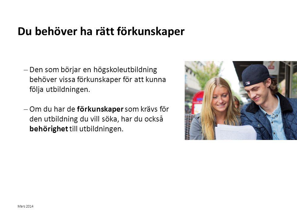 Sv Det svenska utbildningssystemet Mars 2014