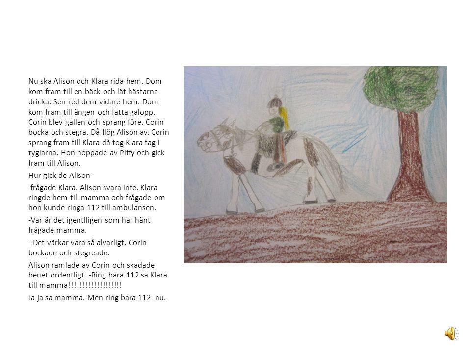 Nu ska Alison och Klara rida hem.Dom kom fram till en bäck och lät hästarna dricka.