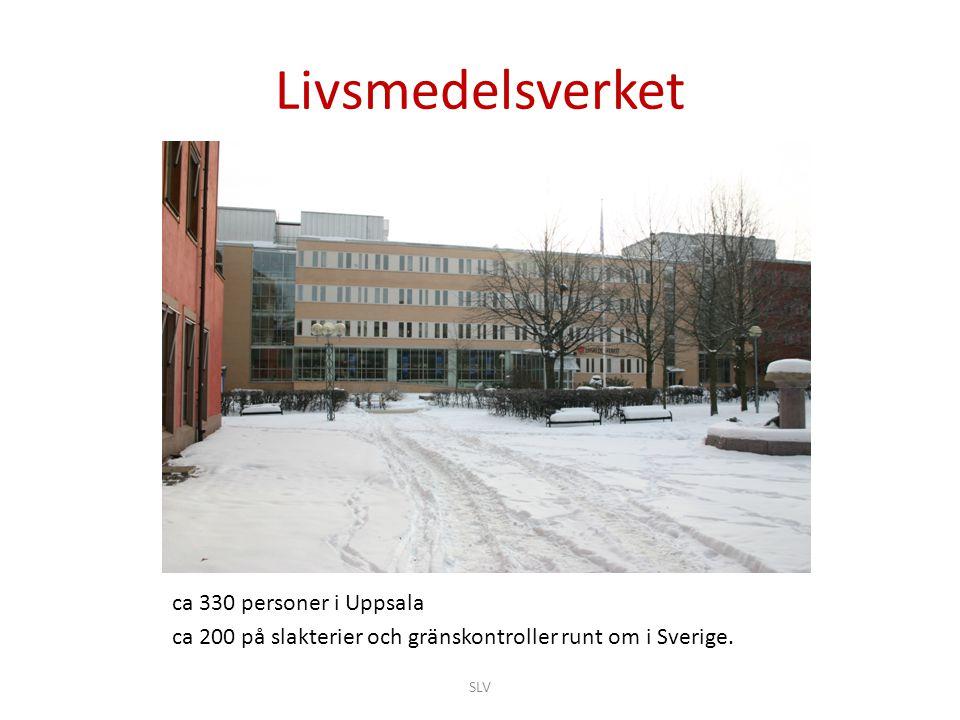 Livsmedelsverket ca 330 personer i Uppsala ca 200 på slakterier och gränskontroller runt om i Sverige. SLV
