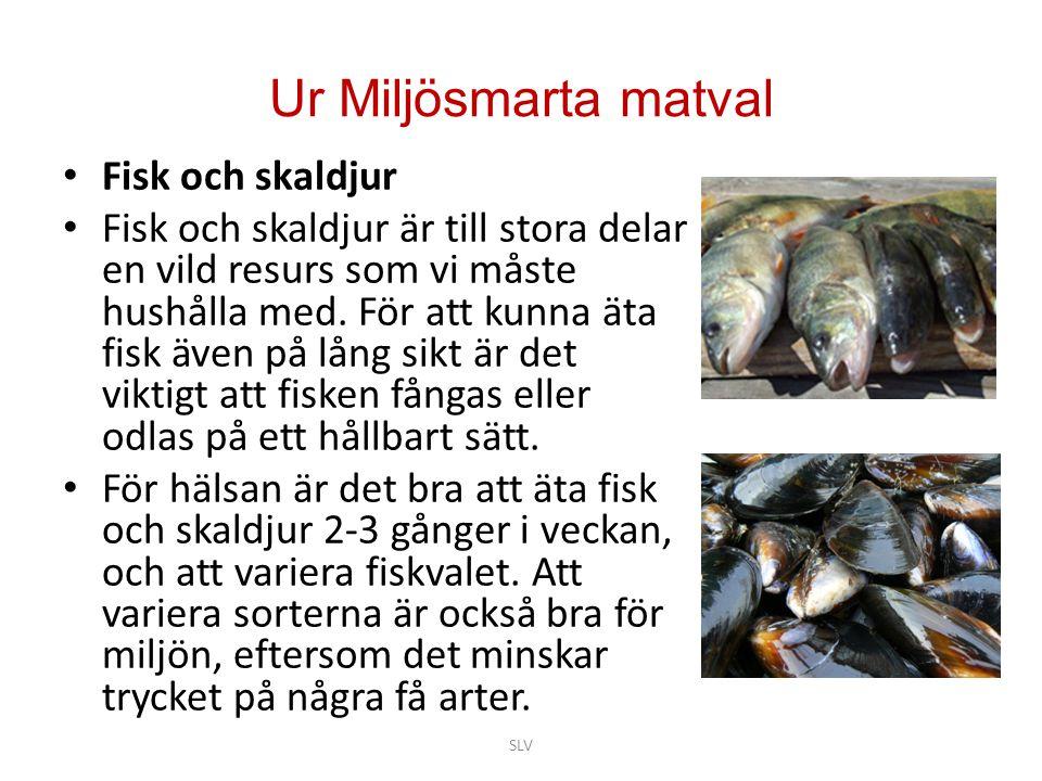 Ur Miljösmarta matval • Fisk och skaldjur • Fisk och skaldjur är till stora delar en vild resurs som vi måste hushålla med. För att kunna äta fisk äve