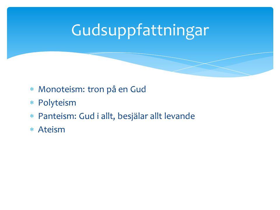 Monoteism: tron på en Gud  Polyteism  Panteism: Gud i allt, besjälar allt levande  Ateism Gudsuppfattningar
