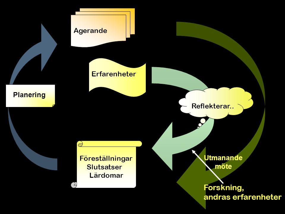 Forskning, andras erfarenheter Föreställningar Slutsatser Lärdomar Agerande Erfarenheter Reflekterar..