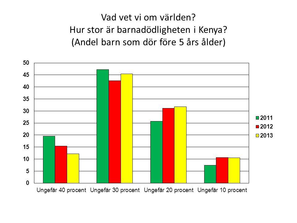 Vad vet vi om världen Hur stor är barnadödligheten i Kenya (Andel barn som dör före 5 års ålder)