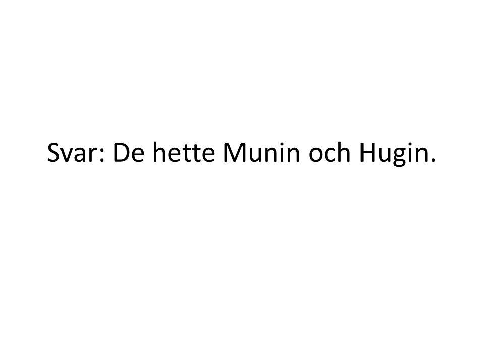 Svar: De hette Munin och Hugin.