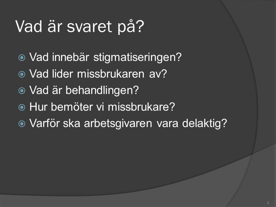 Vad är svaret på?  Vad innebär stigmatiseringen?  Vad lider missbrukaren av?  Vad är behandlingen?  Hur bemöter vi missbrukare?  Varför ska arbet