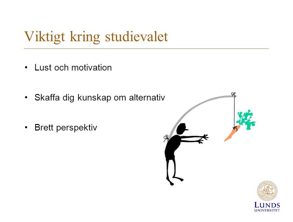 Viktigt kring studievalet • Lust och motivation • Skaffa dig kunskap om alternativ • Brett perspektiv