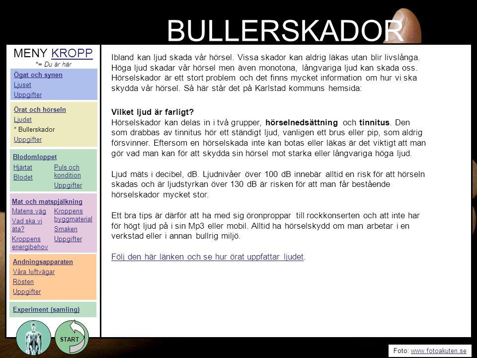 START Foto: www.fotoakuten.sewww.fotoakuten.se START BULLERSKADOR Ibland kan ljud skada vår hörsel. Vissa skador kan aldrig läkas utan blir livslånga.