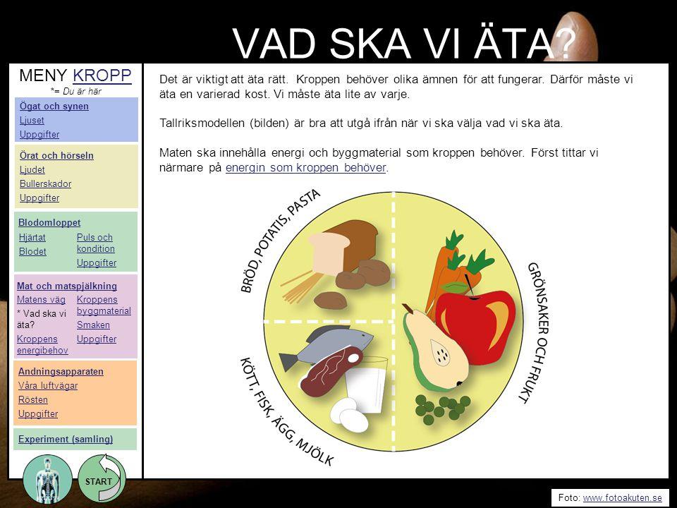START Foto: www.fotoakuten.sewww.fotoakuten.se START VAD SKA VI ÄTA? Det är viktigt att äta rätt. Kroppen behöver olika ämnen för att fungerar. Därför
