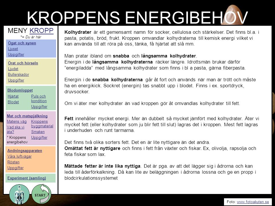 START Foto: www.fotoakuten.sewww.fotoakuten.se START KROPPENS ENERGIBEHOV Kolhydrater är ett gemensamt namn för socker, cellulosa och stärkelser. Det