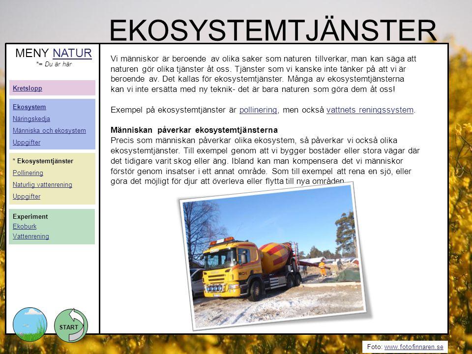 START Foto: www.fotofinnaren.sewww.fotofinnaren.se EKOSYSTEMTJÄNSTER Vi människor är beroende av olika saker som naturen tillverkar, man kan säga att