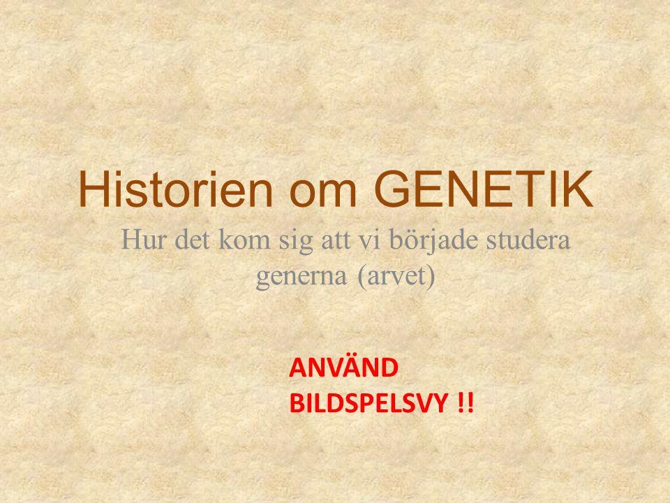 Historien om GENETIK Hur det kom sig att vi började studera generna (arvet) ANVÄND BILDSPELSVY !!