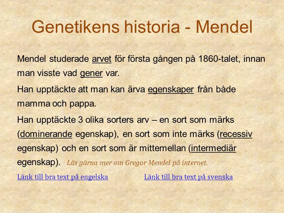 Genetikens historia - Darwin Darwin undersökte hur olika arter förändras med tiden.