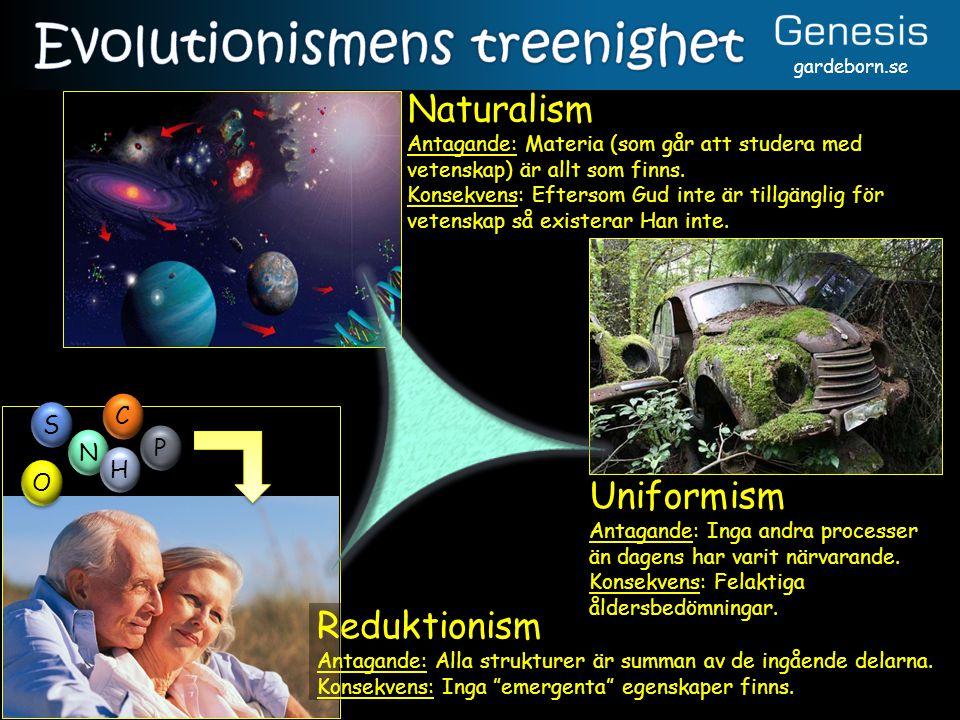 gardeborn.se Naturalism Antagande: Materia (som går att studera med vetenskap) är allt som finns. Konsekvens: Eftersom Gud inte är tillgänglig för vet