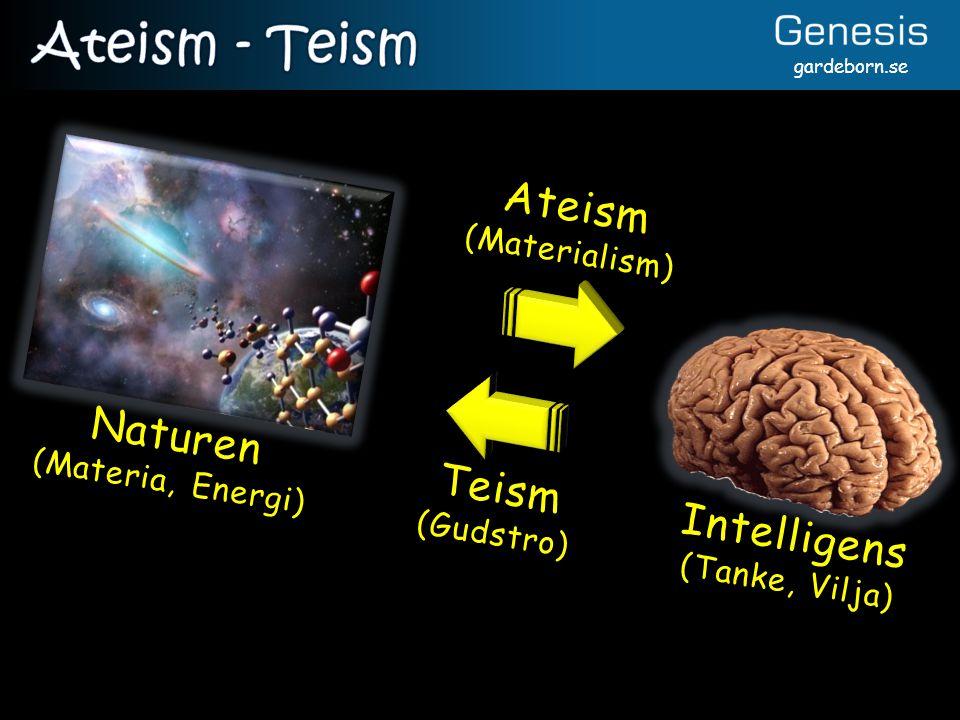 gardeborn.se Ateism (Materialism) Teism (Gudstro) Intelligens (Tanke, Vilja) Naturen (Materia, Energi)
