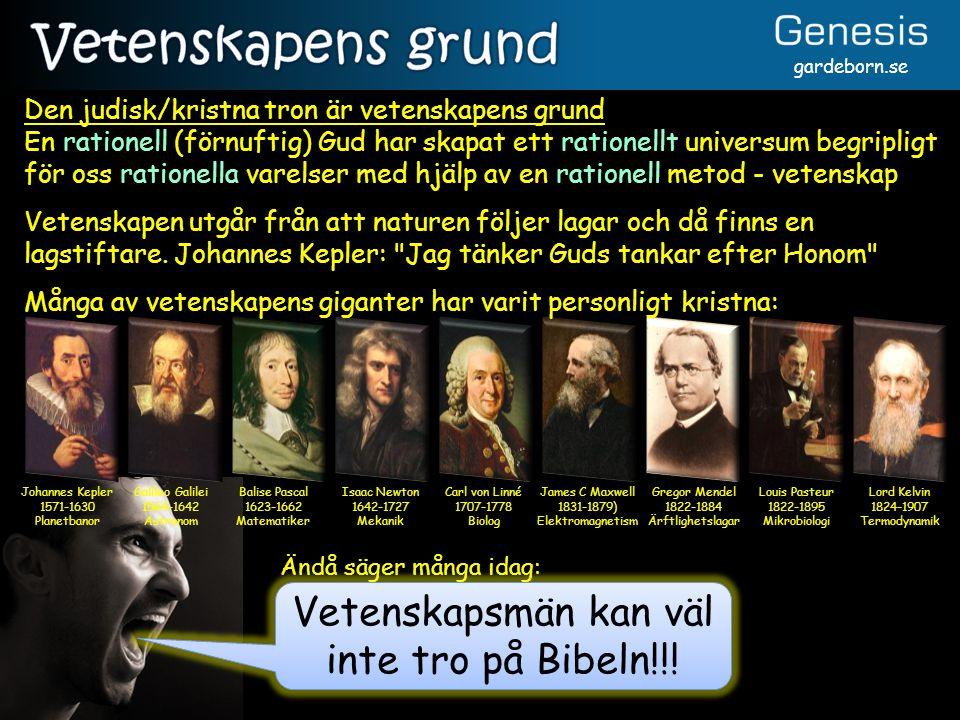 gardeborn.se Johannes Kepler 1571-1630 Planetbanor Galileo Galilei 1564-1642 Astronom Balise Pascal 1623-1662 Matematiker Isaac Newton 1642-1727 Mekan