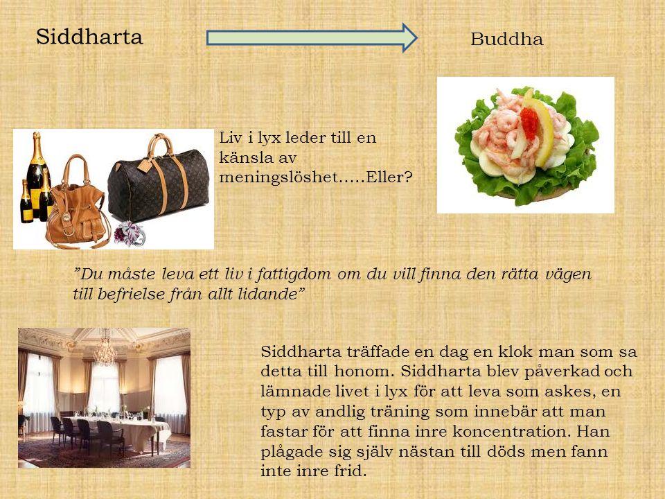 Siddharta Buddha Liv i lyxleder till en känsla av meningslöshet…..Eller? Siddharta träffade en dag en klok man som sa detta till honom. Siddharta blev