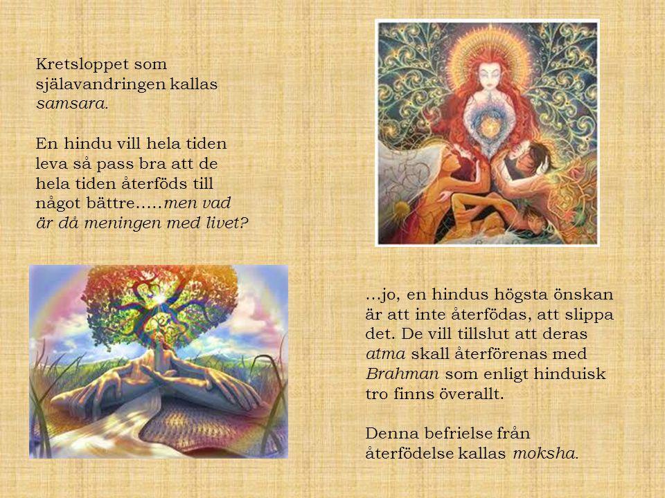 Siddharta Buddha Liv i lyxleder till en känsla av meningslöshet…..Eller.