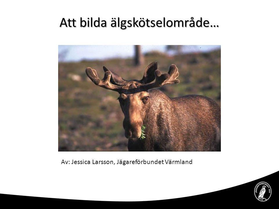 Att bilda älgskötselområde… Av: Jessica Larsson, Jägareförbundet Värmland