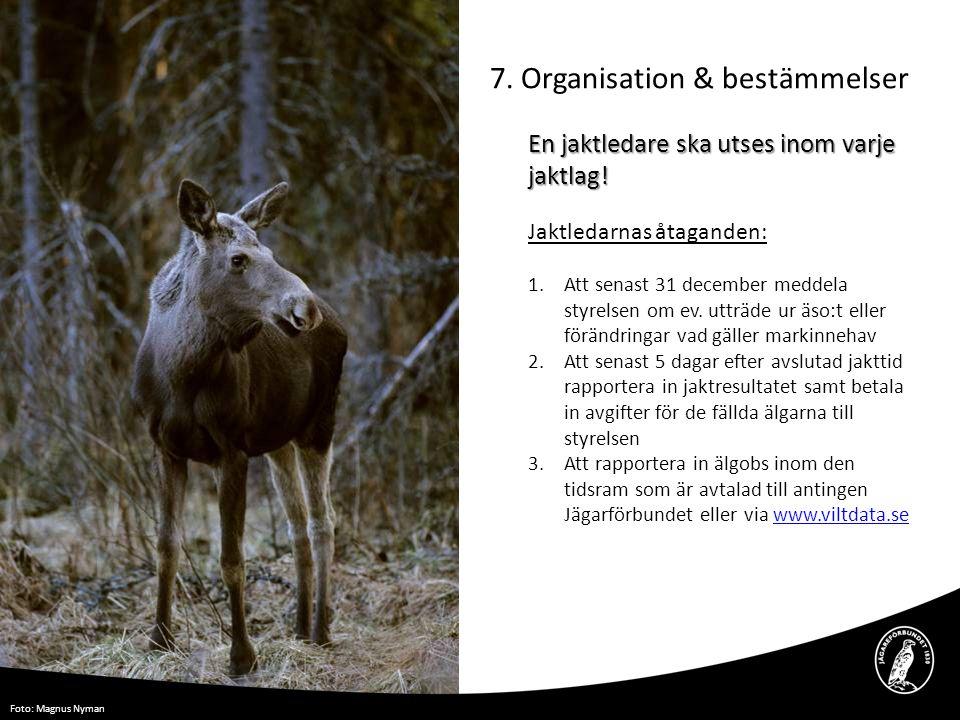 7. Organisation & bestämmelser En jaktledare ska utses inom varje jaktlag! Jaktledarnas åtaganden: 1.Att senast 31 december meddela styrelsen om ev. u
