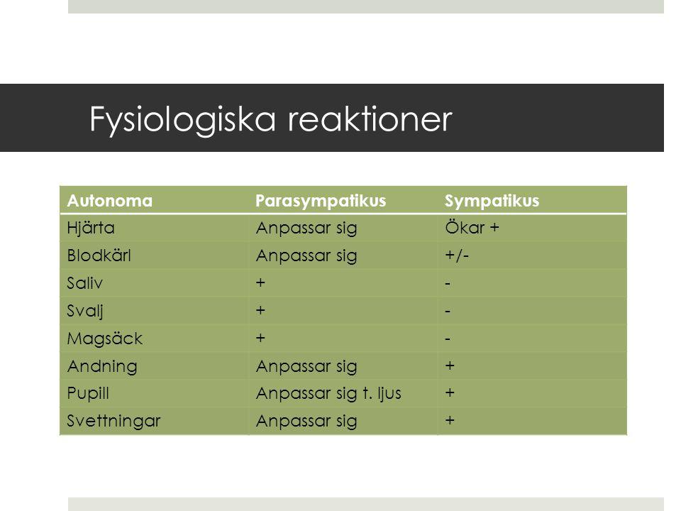 Fysiologiska reaktioner AutonomaParasympatikusSympatikus HjärtaAnpassar sigÖkar + BlodkärlAnpassar sig+/- Saliv+- Svalj+- Magsäck+- AndningAnpassar sig+ PupillAnpassar sig t.