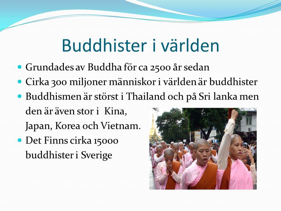Några fakta  Enligt Buddha finns inga gudar som kan hjälpa människorna.