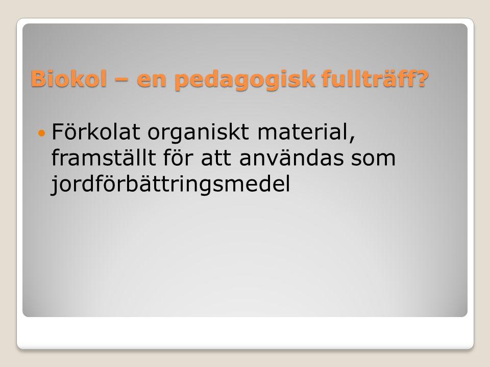 Biokol – en pedagogisk fullträff?  Förkolat organiskt material, framställt för att användas som jordförbättringsmedel