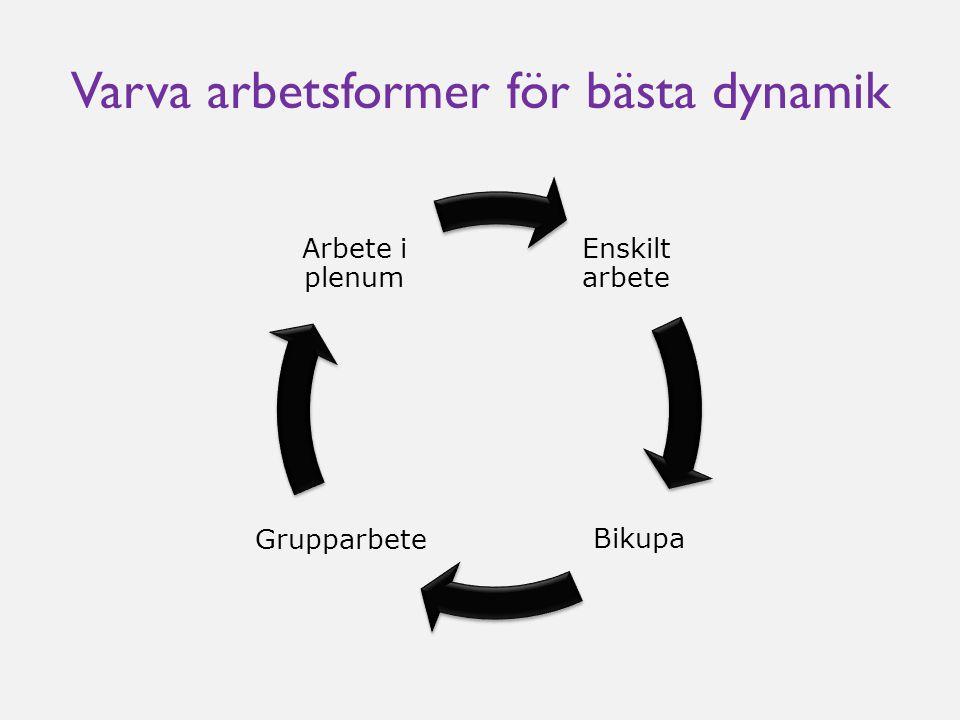 Varva arbetsformer för bästa dynamik Enskilt arbete Bikupa Grupparbete Arbete i plenum