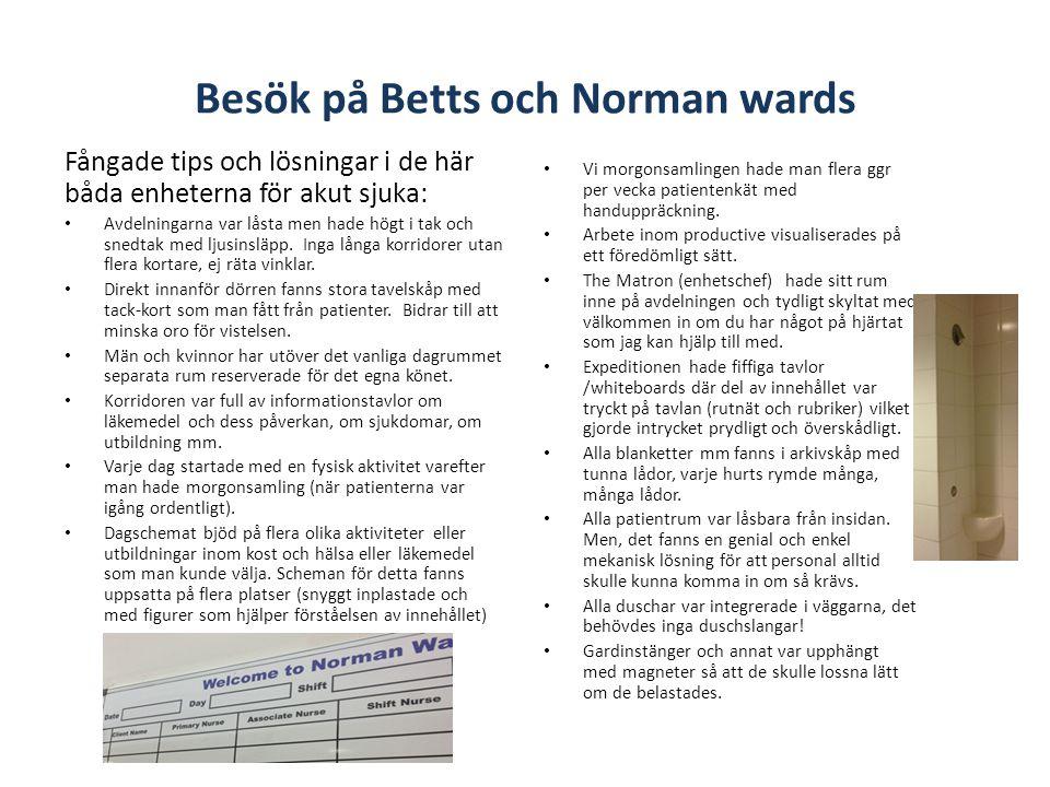 Besök på Betts och Norman wards Fångade tips och lösningar i de här båda enheterna för akut sjuka: • Avdelningarna var låsta men hade högt i tak och snedtak med ljusinsläpp.